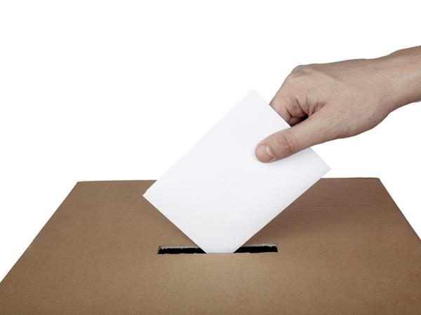 Izbori za Savet MZ Ljukovo 27. jula korisno glasanje 3