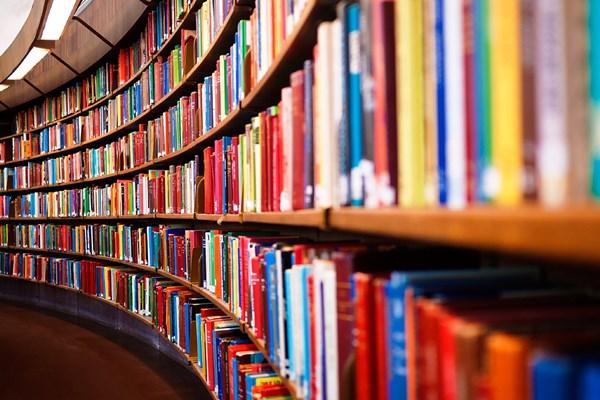 XIX Susreti bibliografa u Inđiji 14. novembra Bibliografija
