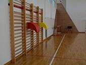 Renovirana školska sala u Novom Slankamenu nakon pola veka